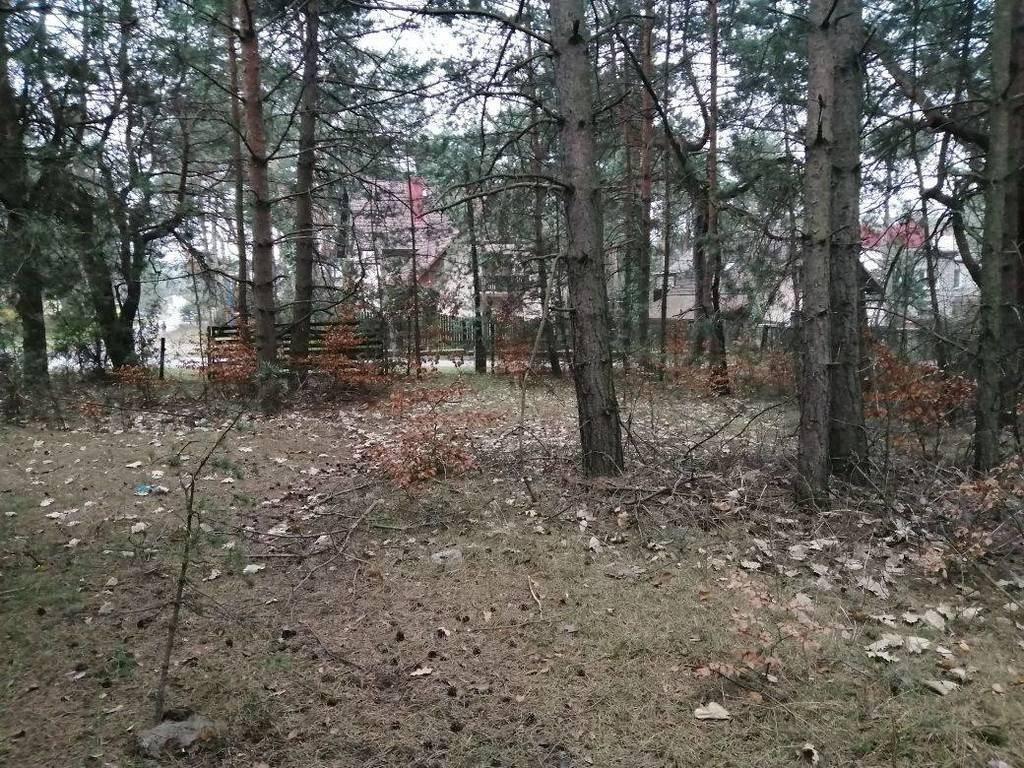 Działka budowlana na sprzedaż Dąbrowa Górnicza, Sikorka, Relaksowa  882m2 Foto 4