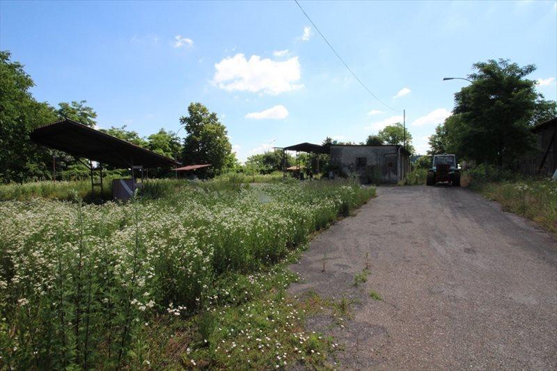 Lokal użytkowy na sprzedaż Radymno, Złota Góra  4849m2 Foto 9