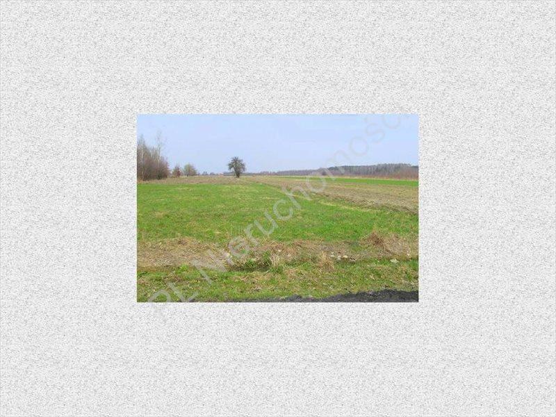 Działka rolna na sprzedaż Tyborów  4500m2 Foto 5