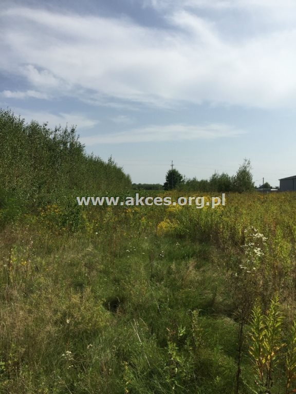 Działka rolna na sprzedaż Zawodne  1200m2 Foto 5