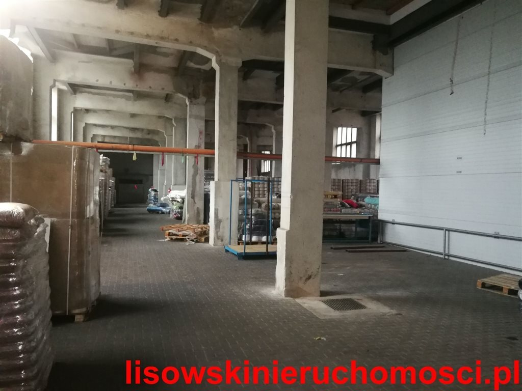 Magazyn na wynajem Łódź, Bałuty, Teofilów  600m2 Foto 4