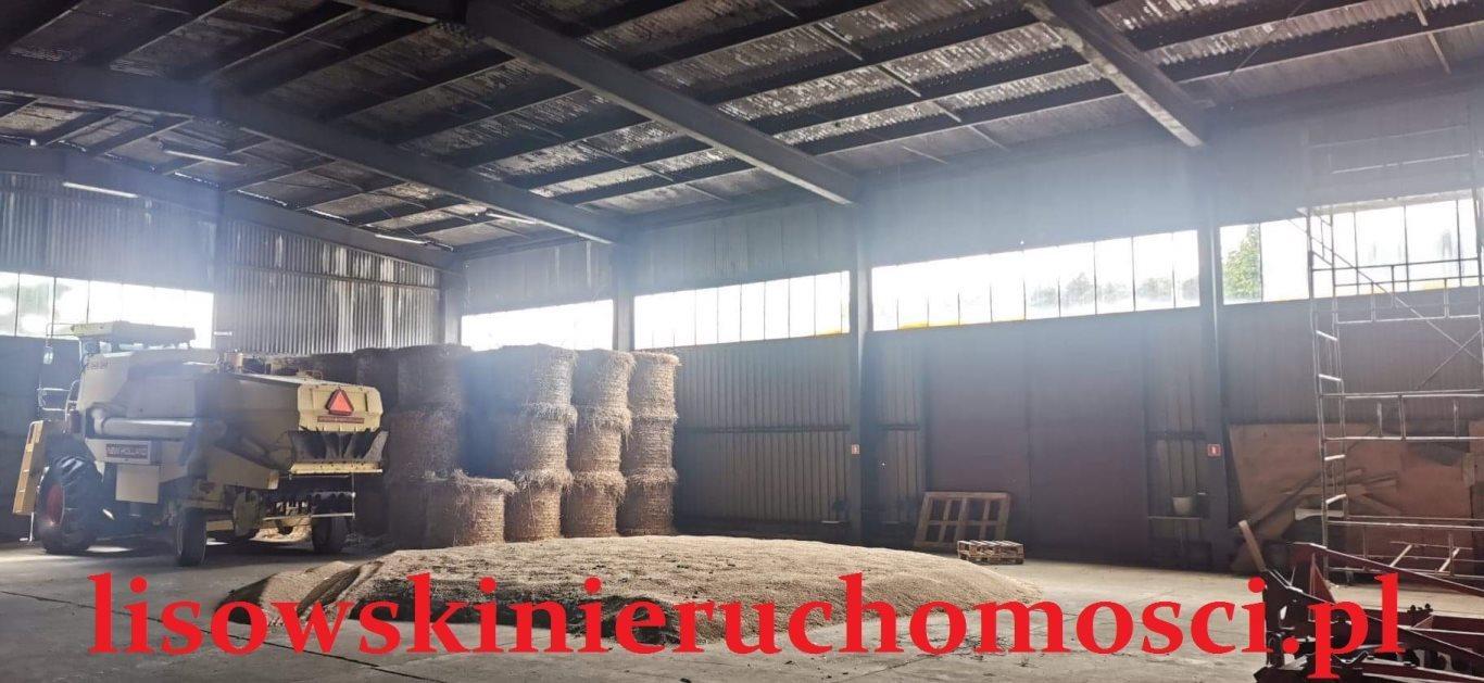 Działka przemysłowo-handlowa na sprzedaż Dąbrówka Wielka  79240m2 Foto 4