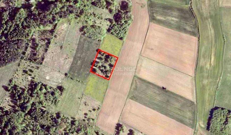 Działka rolna na sprzedaż Strzegowa  6649m2 Foto 2