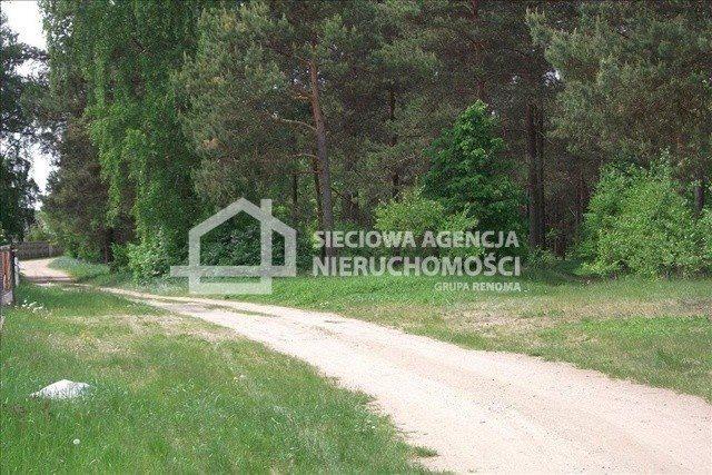 Działka leśna na sprzedaż Czarniż  44100m2 Foto 3