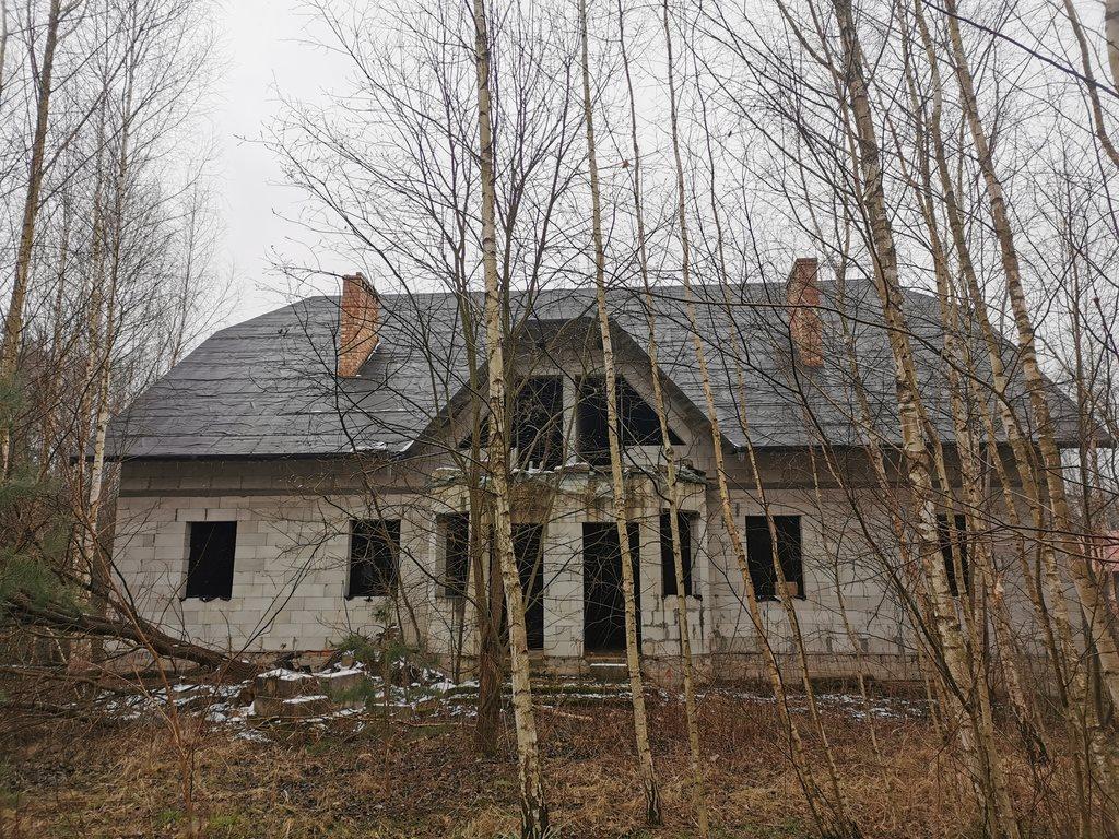 Dom na sprzedaż Nowe Budy  330m2 Foto 1