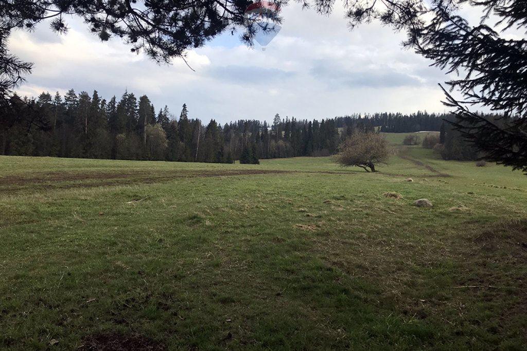 Działka rolna na sprzedaż Białka Tatrzańska  4667m2 Foto 1