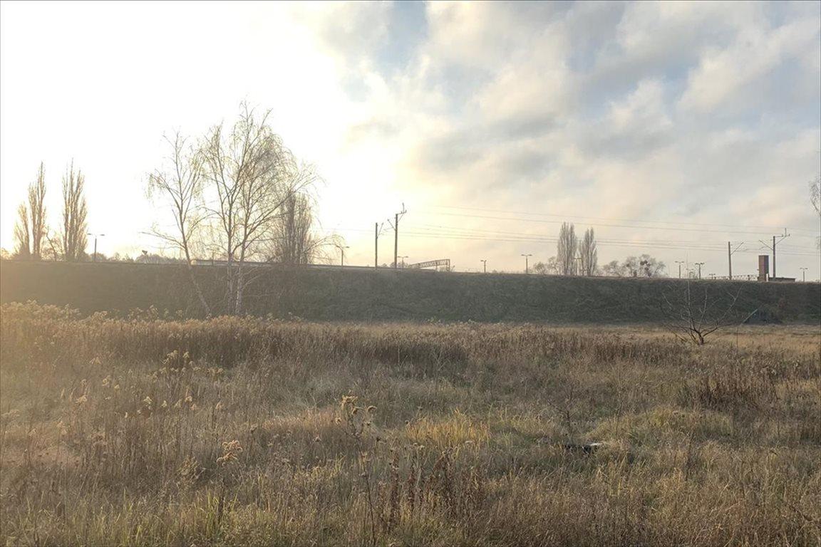 Działka budowlana na sprzedaż Toruń, Toruń  6647m2 Foto 3