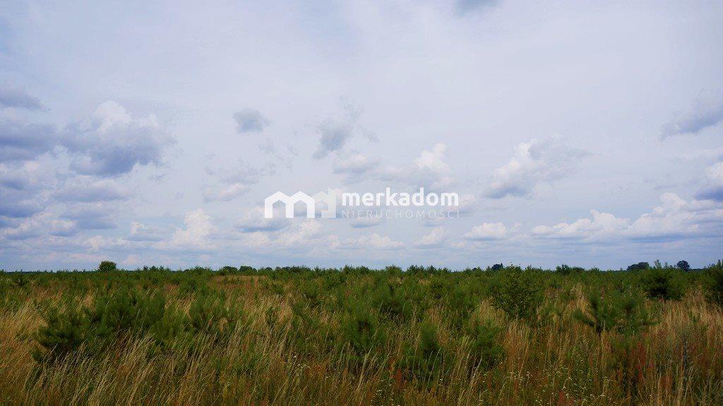Działka rolna na sprzedaż Grzybowo  21116m2 Foto 5