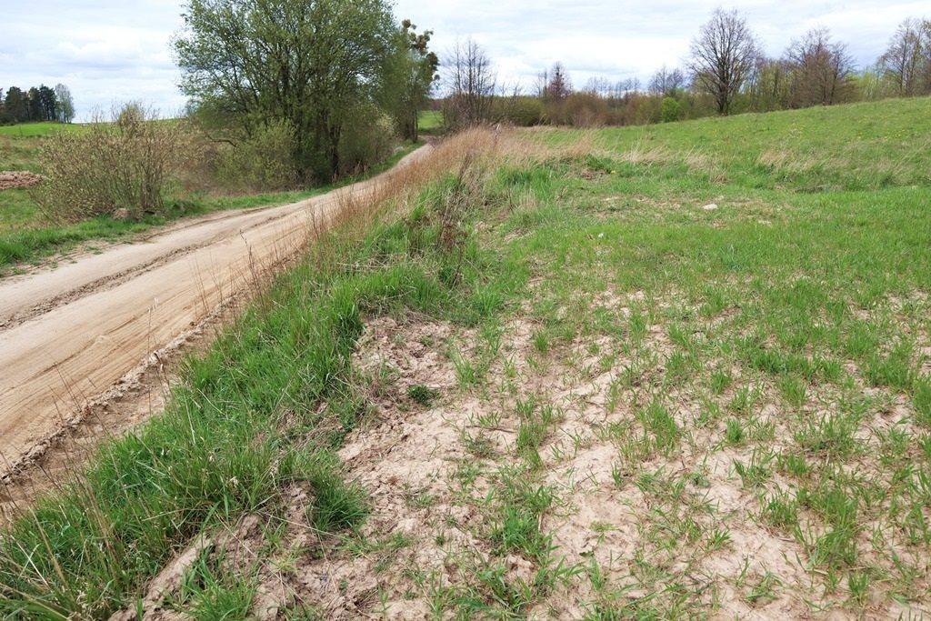 Działka rolna na sprzedaż Gorłówko  3883m2 Foto 3