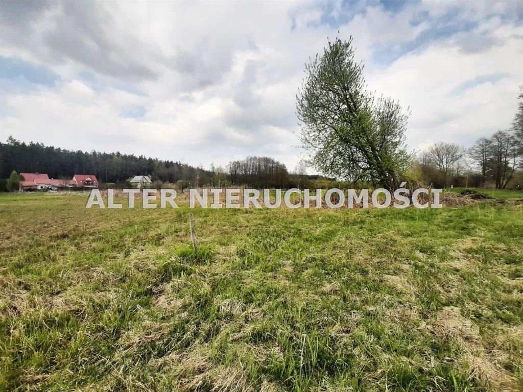 Działka rekreacyjna na sprzedaż Białobrzegi  3800m2 Foto 3