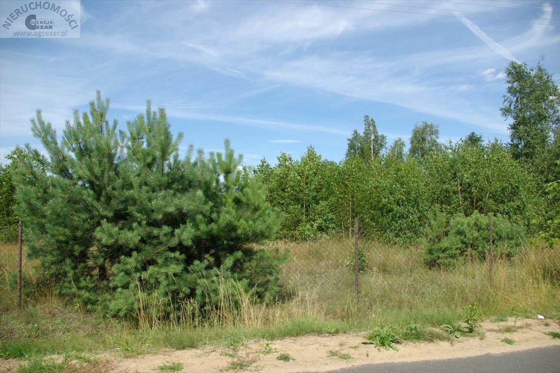 Działka budowlana na sprzedaż Głęboczyca  4017m2 Foto 4