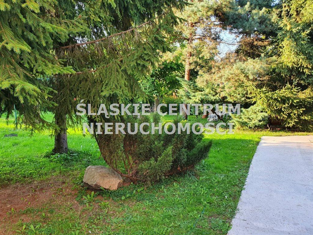 Lokal użytkowy na wynajem Będzin, Łagisza, al. Pokoju  50m2 Foto 7