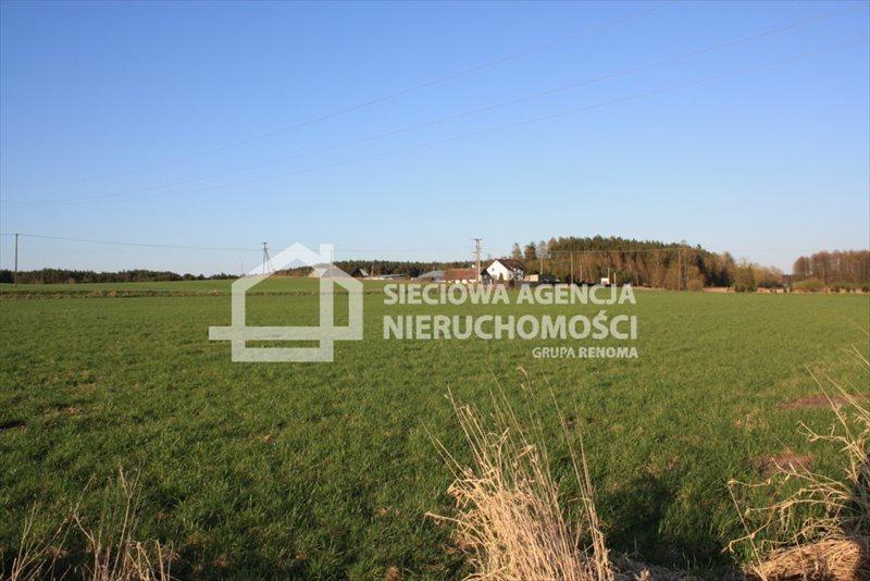 Działka siedliskowa na sprzedaż Stara Kiszewa  8767m2 Foto 8
