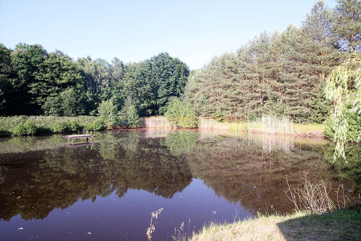 Dom na sprzedaż Lubicz, Ranczo ze stawem i laskiem, ponad hektar  125m2 Foto 7