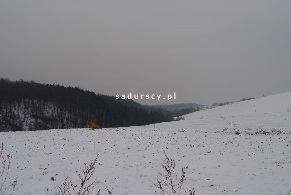 Działka budowlana na sprzedaż Będkowice  2020m2 Foto 5