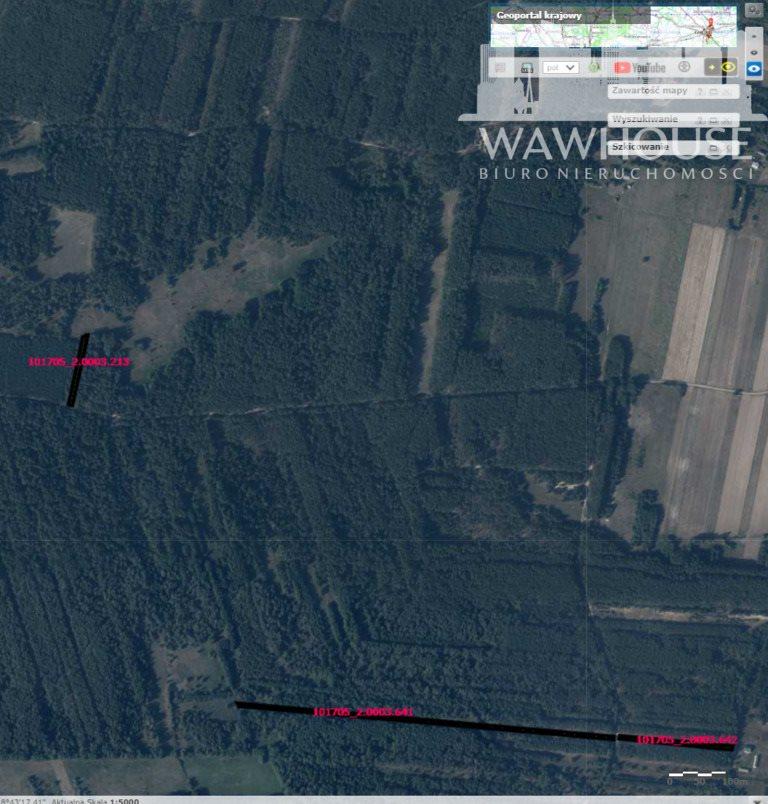 Działka leśna na sprzedaż Czernice  23500m2 Foto 2