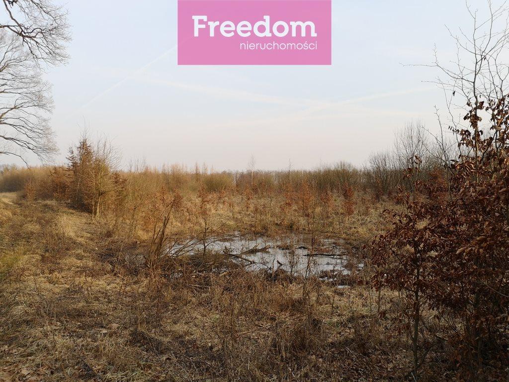 Działka leśna na sprzedaż Sobno  142300m2 Foto 12
