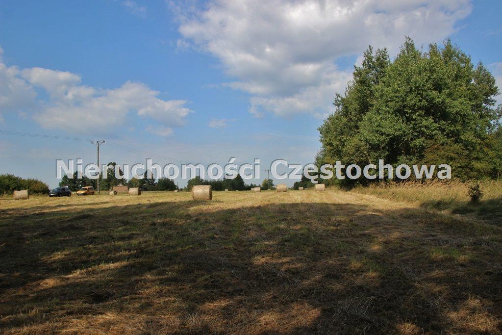 Działka inna na sprzedaż Kamienica Polska  4000m2 Foto 2