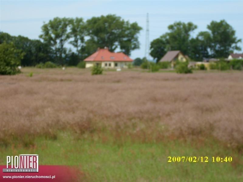 Działka rolna na sprzedaż Rurzyca  1368m2 Foto 2