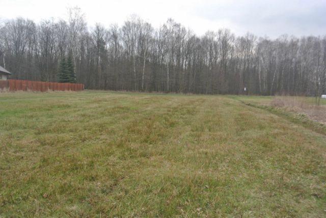 Działka budowlana na sprzedaż Mikołów, Borowa Wieś  2256m2 Foto 3