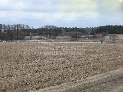 Działka rolna na sprzedaż Zaczerlany  13400m2 Foto 2