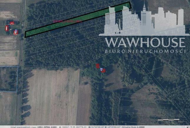 Działka leśna na sprzedaż Wolnica Niechmirowska  5000m2 Foto 2
