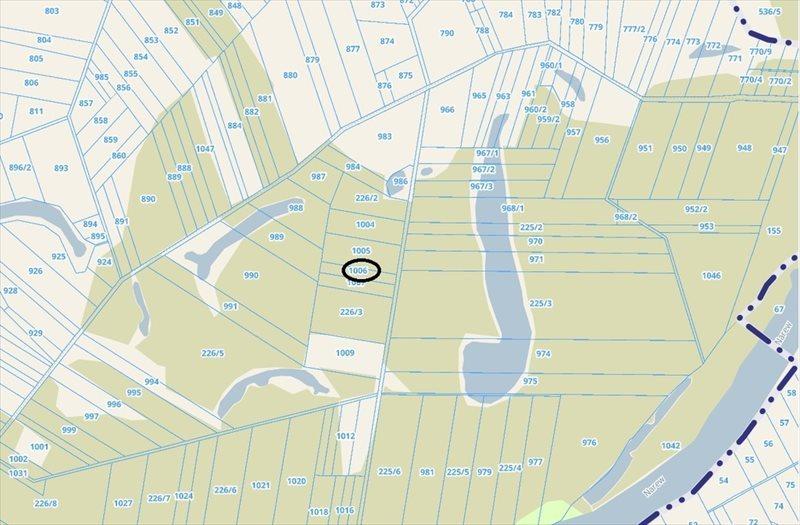 Działka leśna na sprzedaż Jankowo-Młodzianowo  4200m2 Foto 2