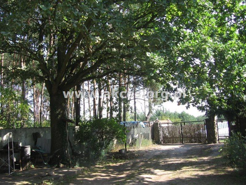 Dom na sprzedaż Solec  458m2 Foto 5