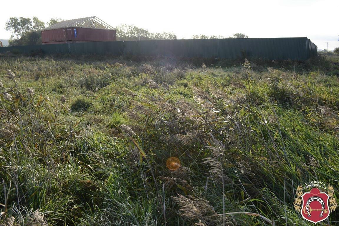 Działka rolna na sprzedaż Dębogórze  2860m2 Foto 9