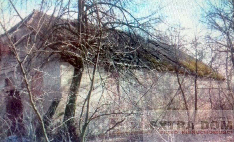 Lokal użytkowy na sprzedaż Dobrzyń Nad Wisłą  760m2 Foto 2
