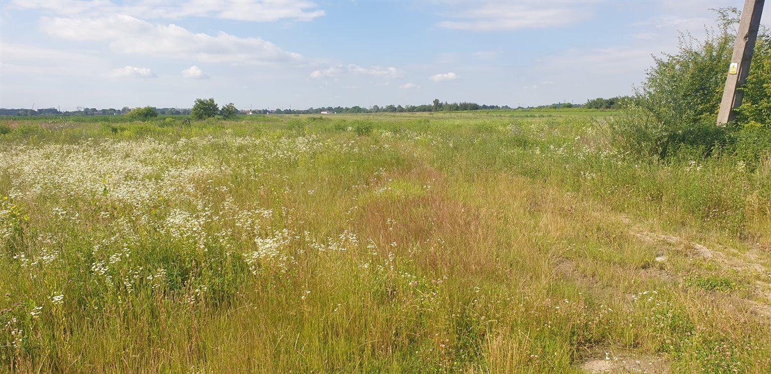 Działka inwestycyjna na sprzedaż Lubiczów  31705m2 Foto 3