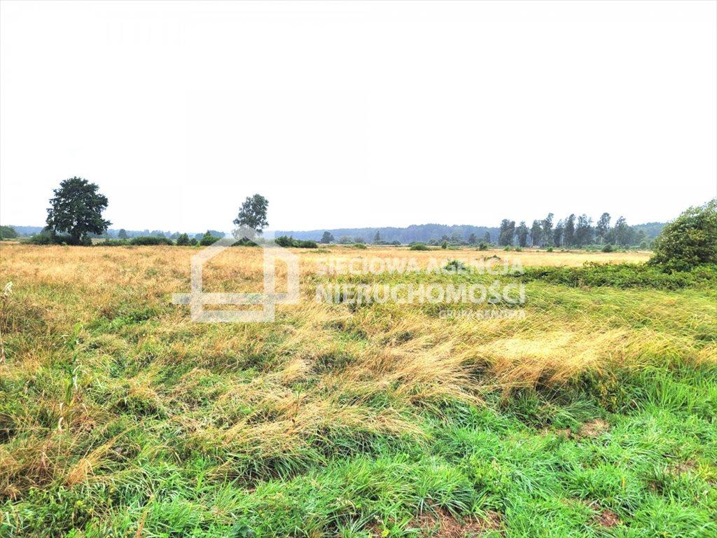 Działka rolna na sprzedaż Sasino  38600m2 Foto 3