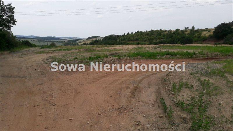Działka inna na sprzedaż Struga  14173m2 Foto 4
