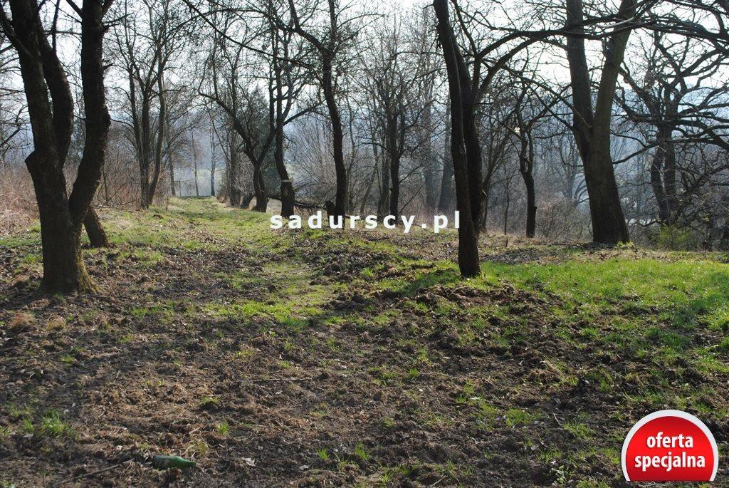 Działka rolna na sprzedaż Kraków, Zwierzyniec, Przegorzały, Kamedulska  2400m2 Foto 4