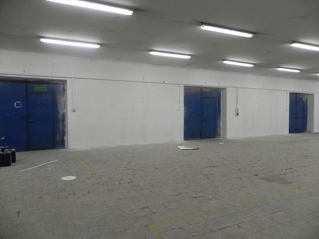 Lokal użytkowy na sprzedaż Katowice  3100m2 Foto 5