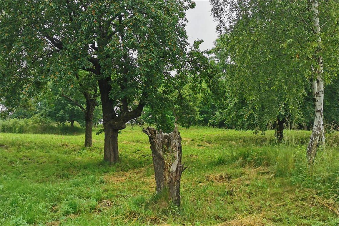 Działka rolna na sprzedaż Balice, Zabierzów  700m2 Foto 3