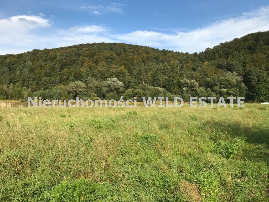 Działka rolna na sprzedaż Trepcza  5800m2 Foto 6