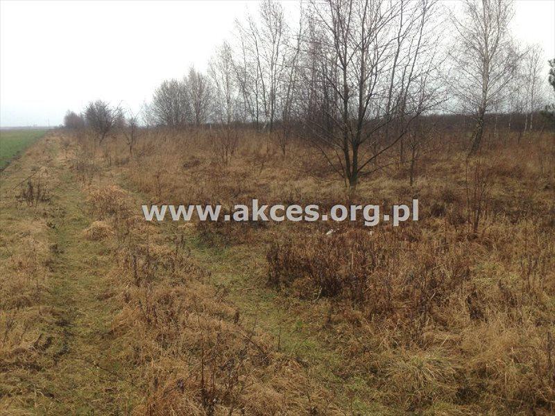 Działka rolna na sprzedaż Gołków  1261m2 Foto 2