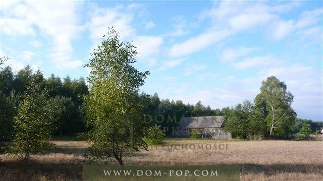 Działka budowlana na sprzedaż Borowiny  3178m2 Foto 1