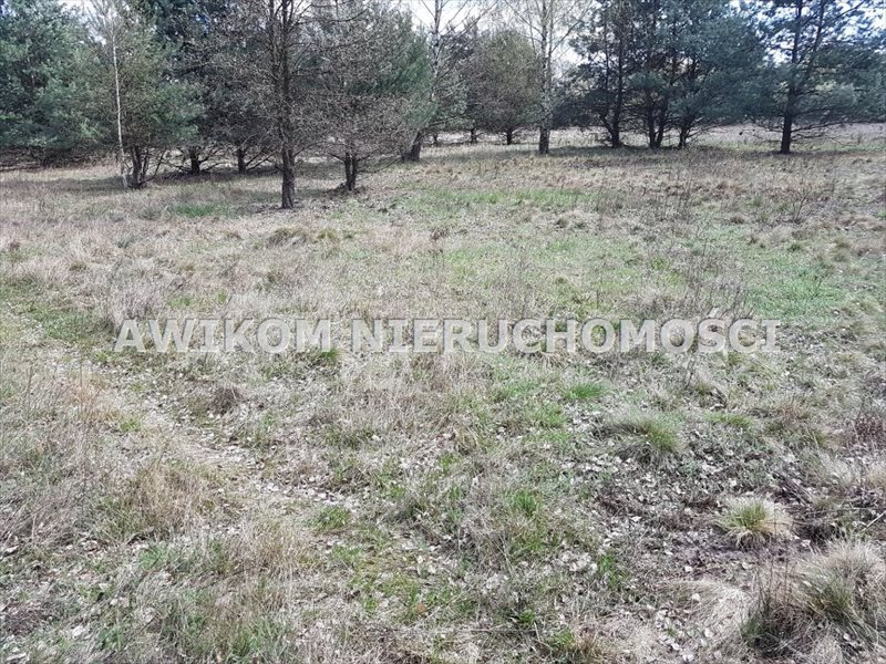 Działka budowlana na sprzedaż Jaktorów, Jaktorów Kolonia  1100m2 Foto 5