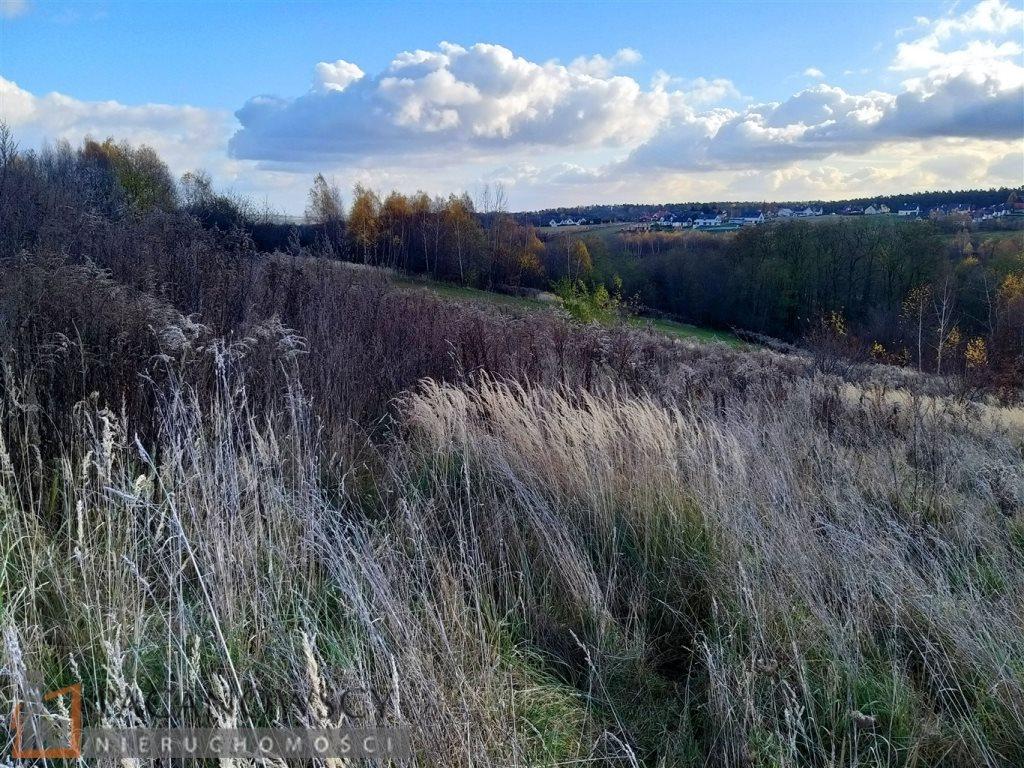 Działka leśna na sprzedaż Michałowice  5000m2 Foto 1