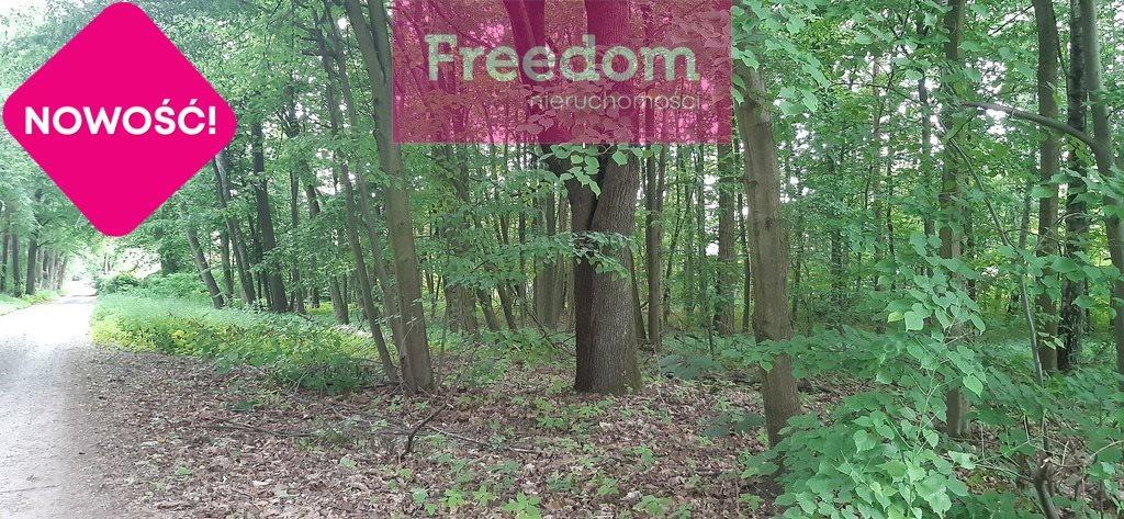 Działka leśna na sprzedaż Ustronie, Ozorkowska  3725m2 Foto 1