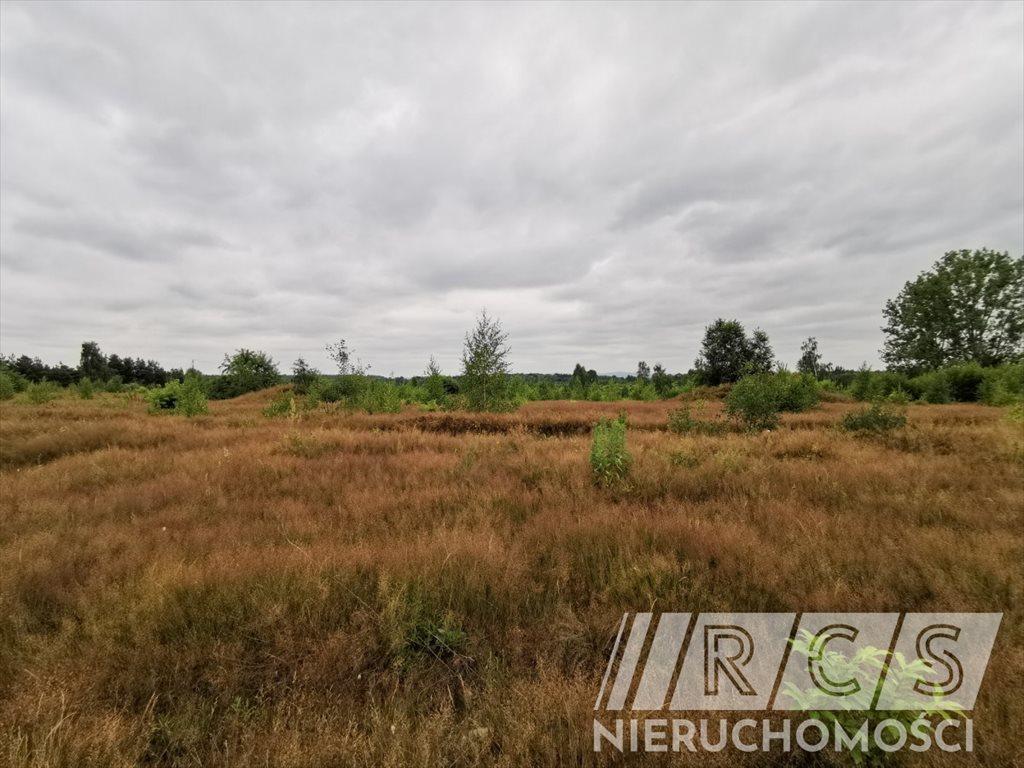 Działka rolna na sprzedaż Gniewomirowice, Kwiatowa  31218m2 Foto 6