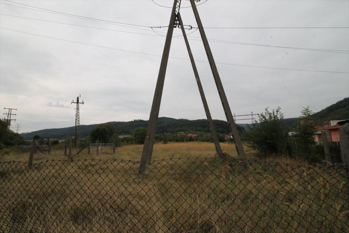 Działka budowlana na sprzedaż Pieszyce  2624m2 Foto 1