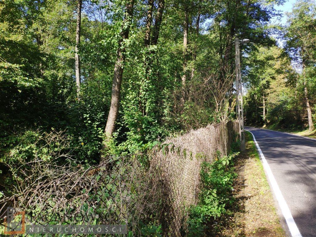 Działka leśna na sprzedaż Januszowice  4556m2 Foto 3