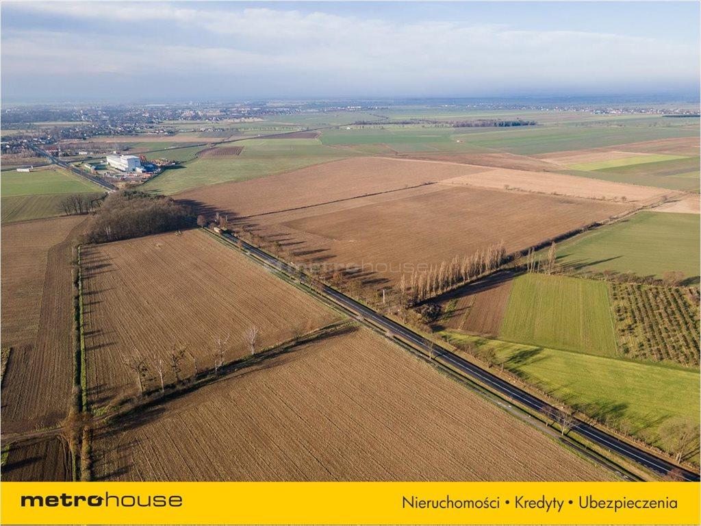 Działka rolna na sprzedaż Bogdańczowice, Kluczbork  57700m2 Foto 6
