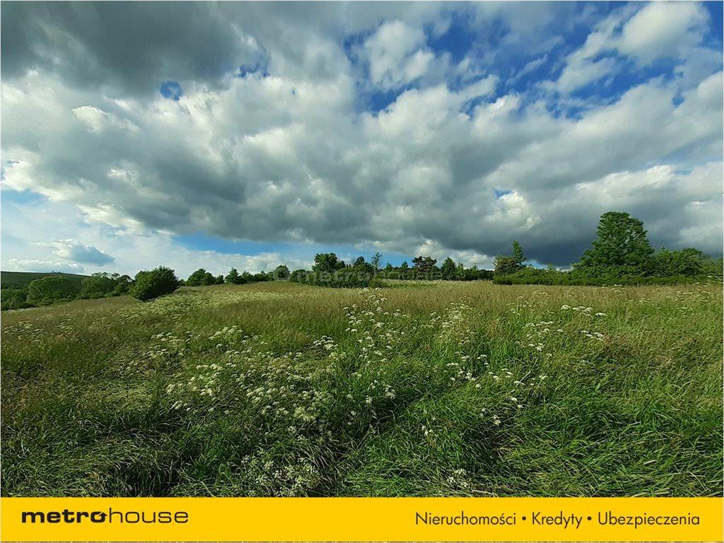 Działka rolna na sprzedaż Morochów, Zagórz  10000m2 Foto 2