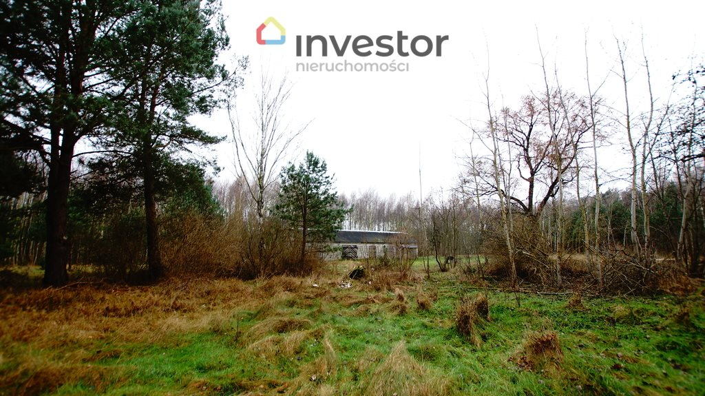 Działka leśna z prawem budowy na sprzedaż Bukowa Wielka  39157m2 Foto 8