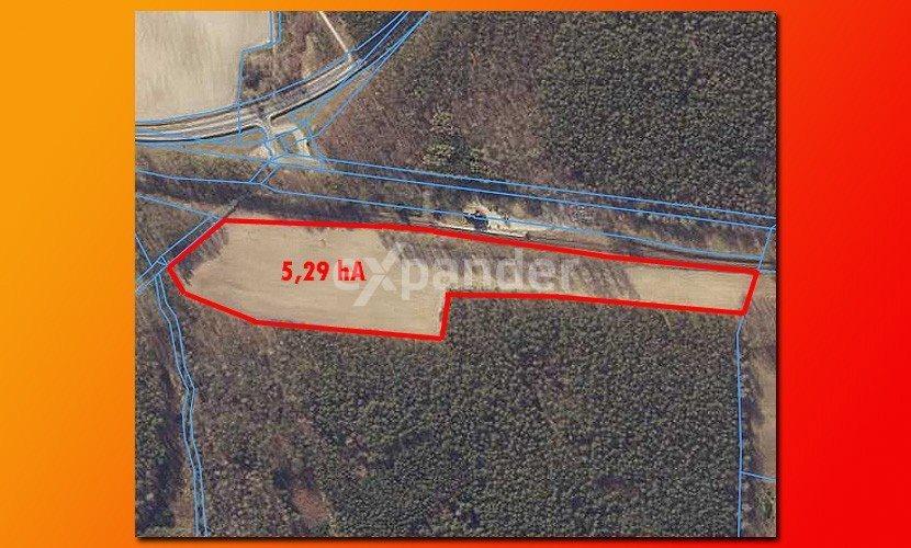 Działka rolna na sprzedaż Roszkowo  52900m2 Foto 4