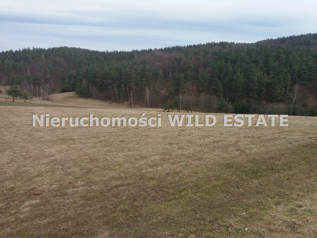 Działka rolna na sprzedaż Solina, Wola Matiaszowa  22400m2 Foto 4
